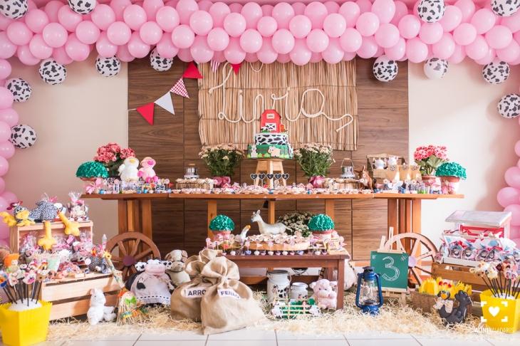 festa_de_crianca_aniversario_fazendinha_fotografia_de_familia-2